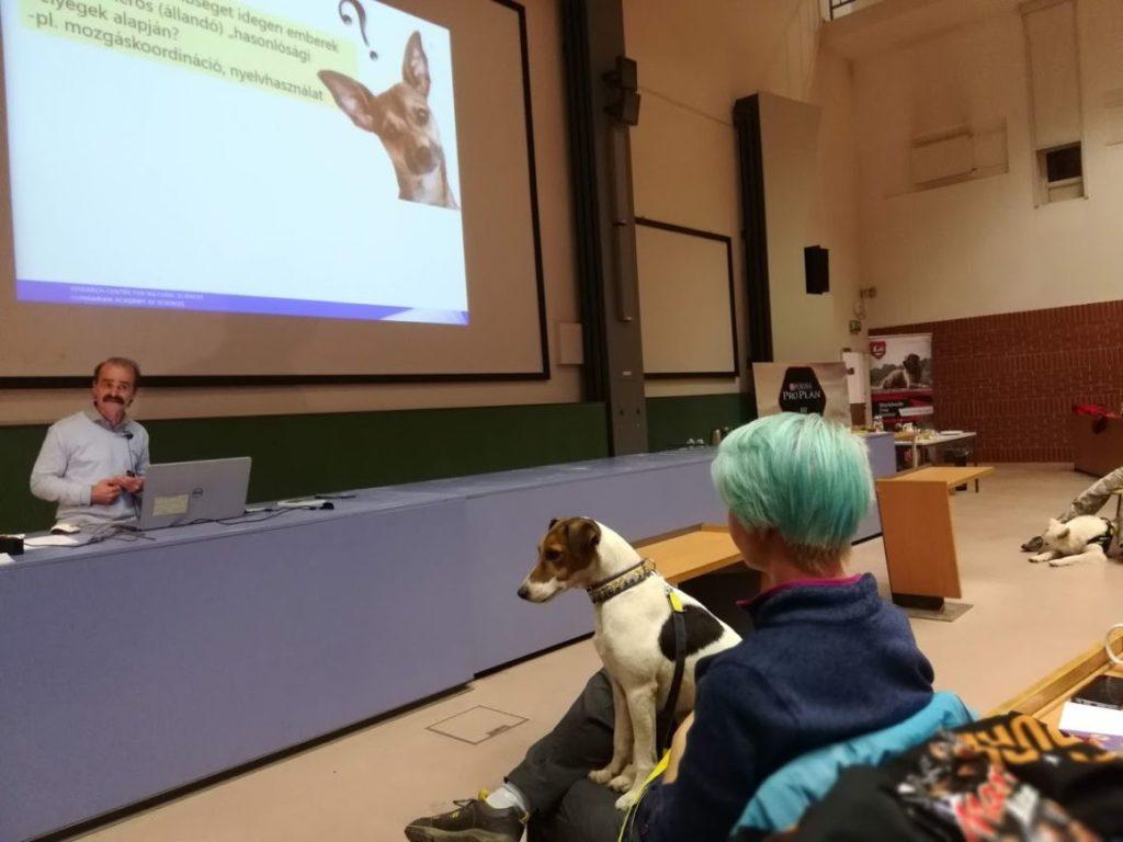 Fotó: ELTE etológia tanszék